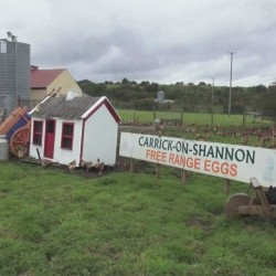 Gannons Poultry